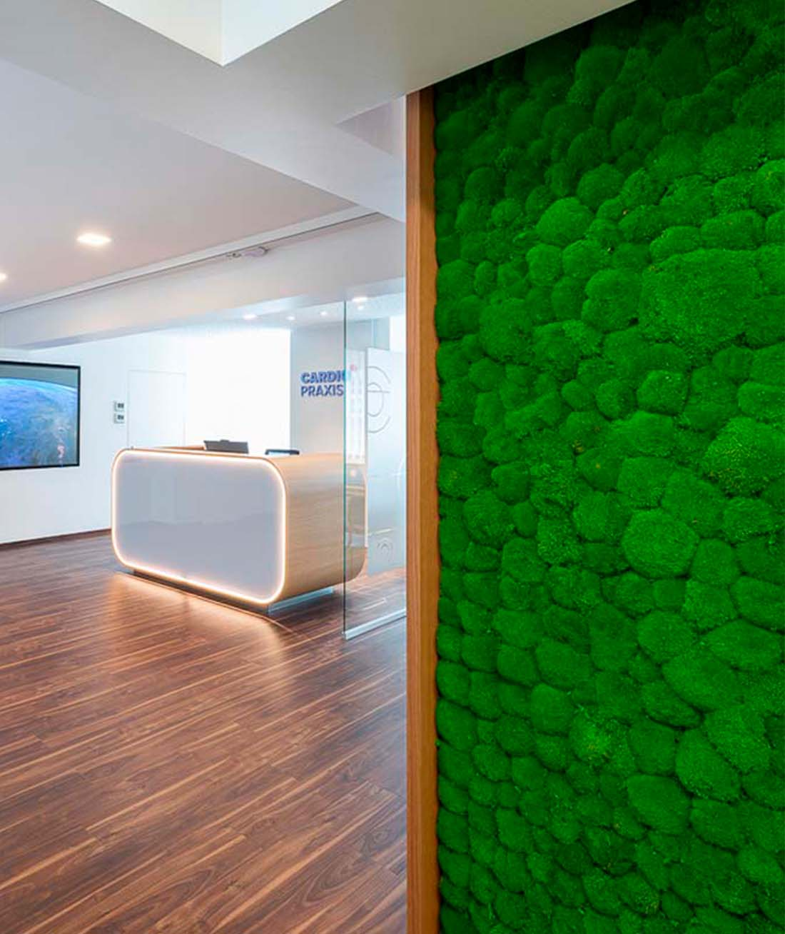 Der helle Empfangsbereich mit der grünen Mooswand in der Cardiopraxis Düsseldorf
