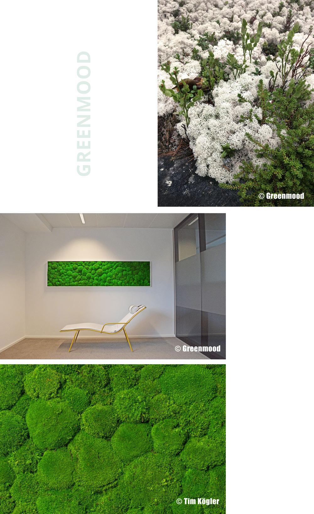greenmood plankontur